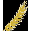 Duxton Water (ASX:D2O) Company Logo Icon