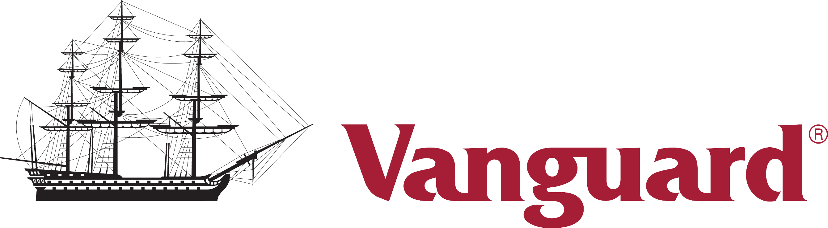Vanguard S&P 500 ETF (NYSEARCA:VOO) Company Logo