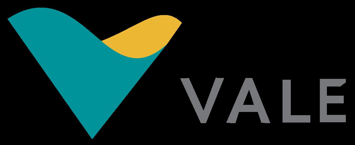 Vale VALE3 Icon Logo