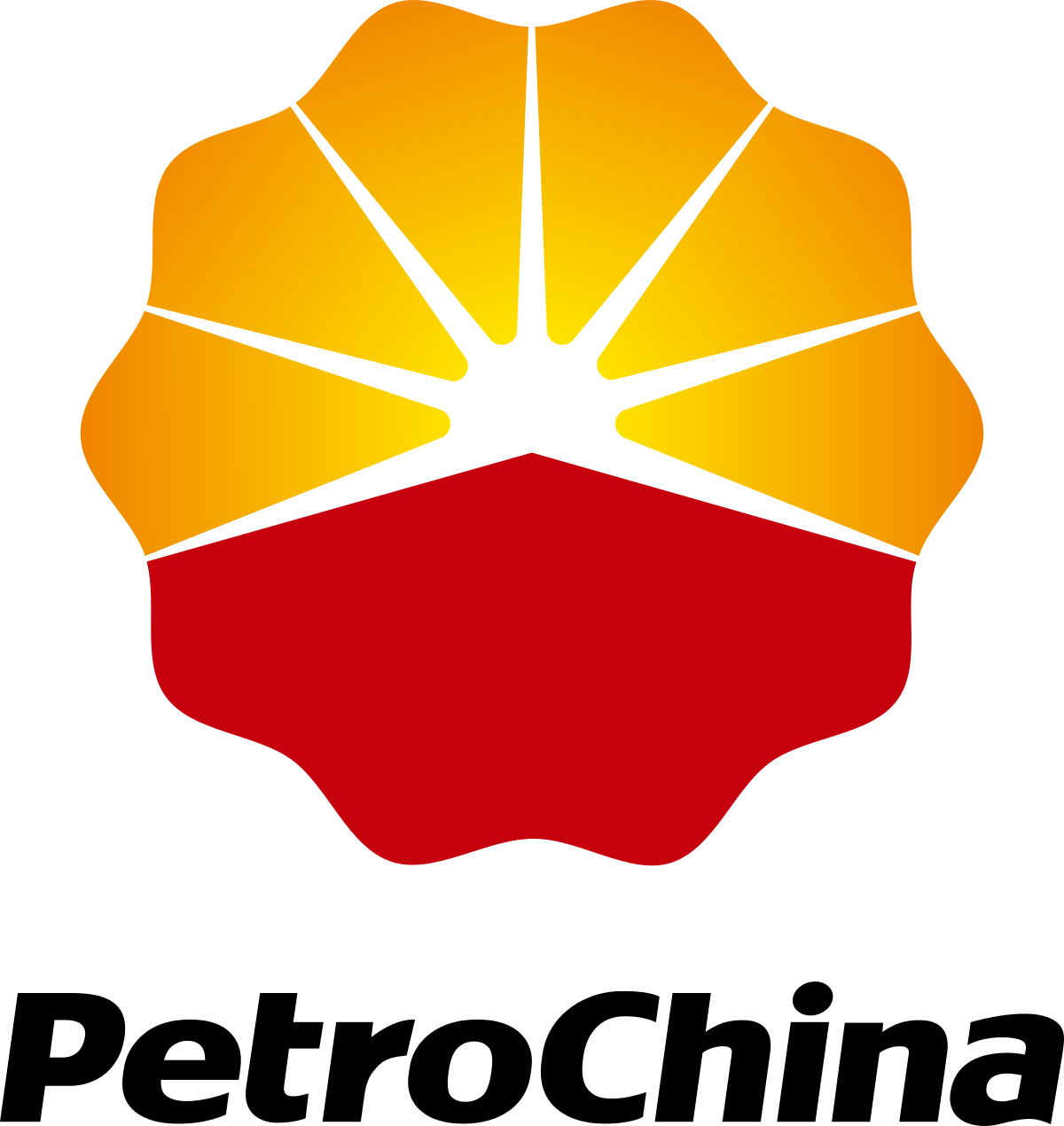 Petrochina Company Limited 601857 Icon Logo